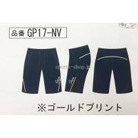 GP17-NV
